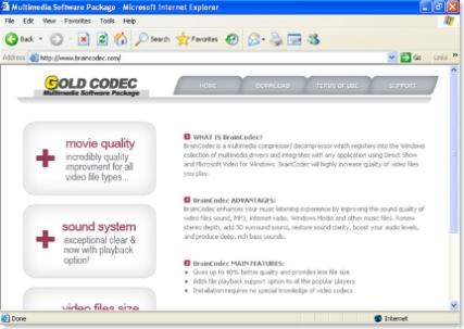 BrainCodec
