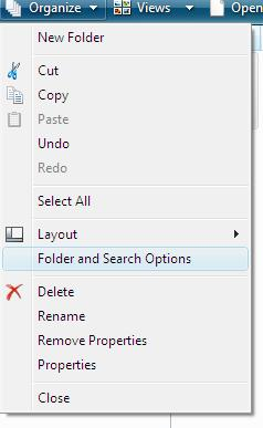 organize folder and search options