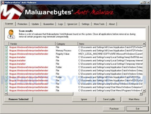 Malwarebytes Anti-malware, list of infected items