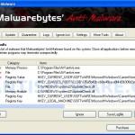 Antivir_remover