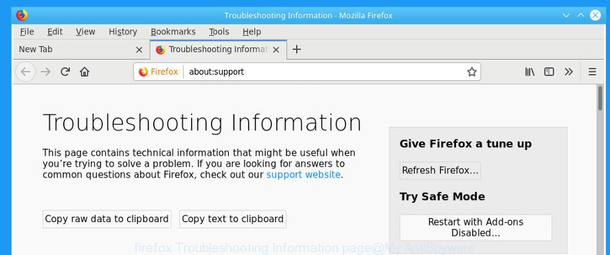 firefox Troubleshooting Information page
