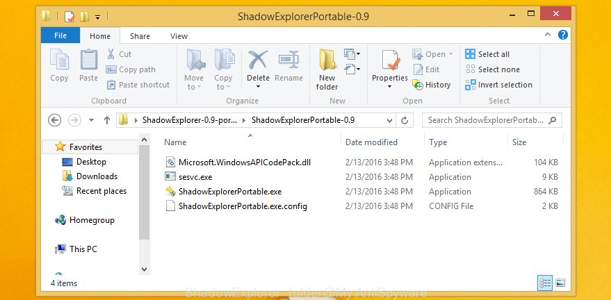 ShadowExplorer folder