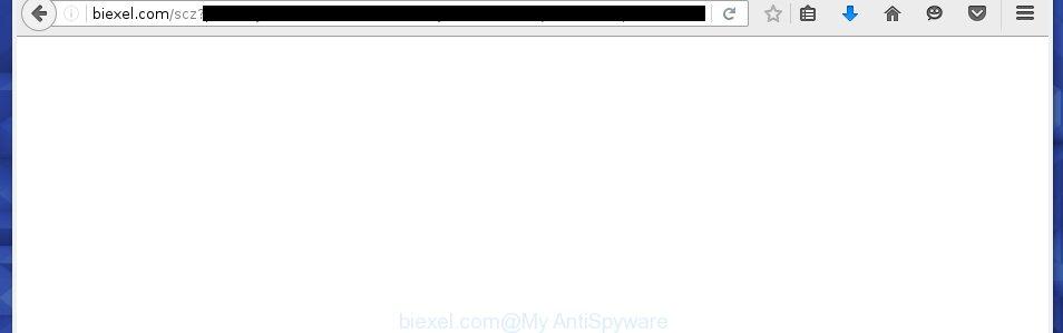 biexel.com