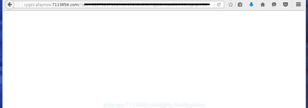 playnow.7113656.com