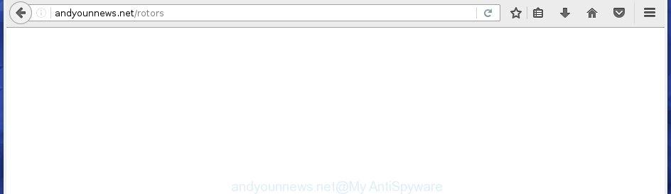 andyounnews.net