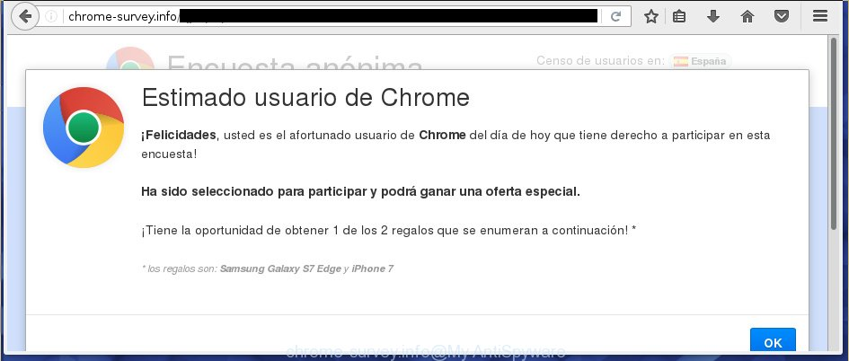 chrome-survey.info