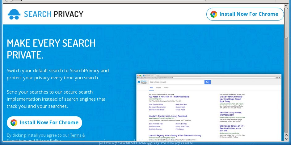 privacy-search.biz