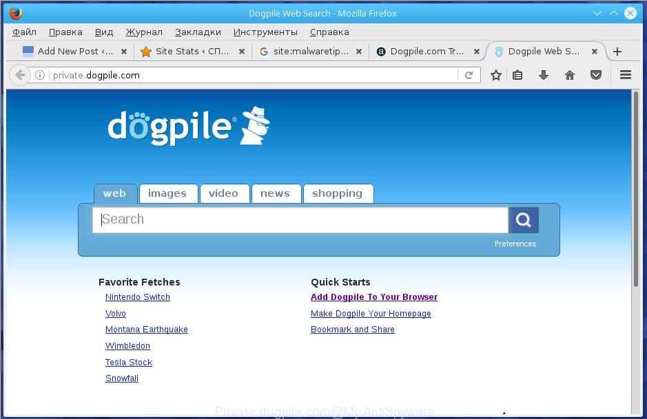 Private.dogpile.com
