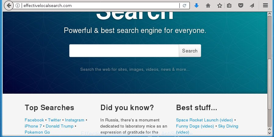 Effectivelocalsearch.com