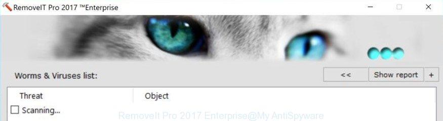 RemoveIt Pro 2017 Enterprise