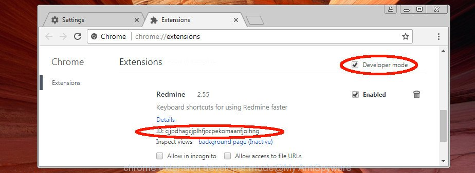 chrome extension developer mode