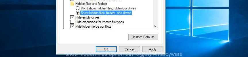 show hidden files option win10