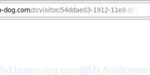 Usd.bravo-dog.com