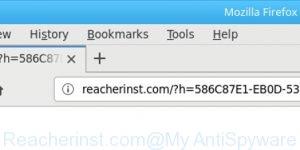 Reacherinst.com