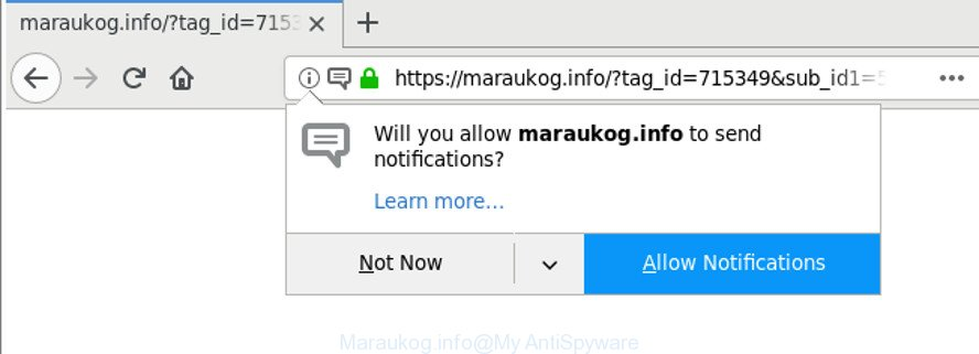 Maraukog.info
