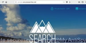 Private.securesearches.net