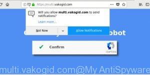 multi.vakogid.com