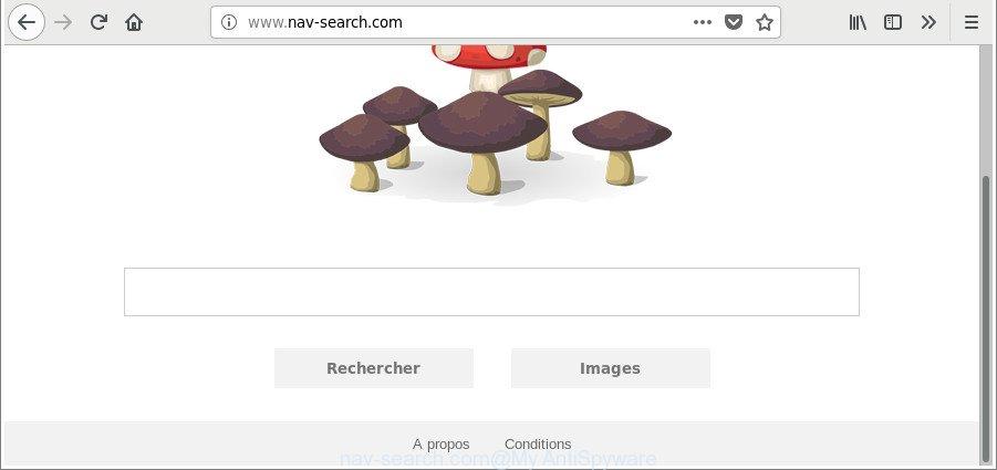 nav-search.com
