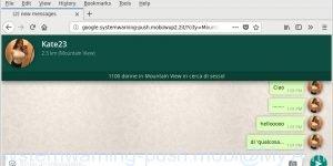 google.systemwarning-push.mobi