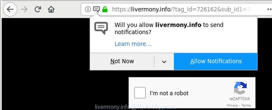 livermony.info