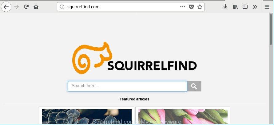 Squirrelfind.com