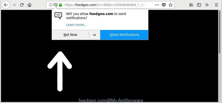 feedgeo.com