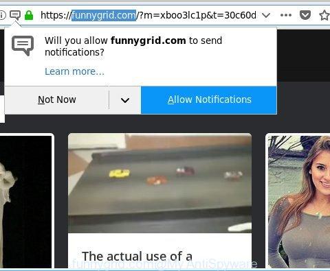 funnygrid.com