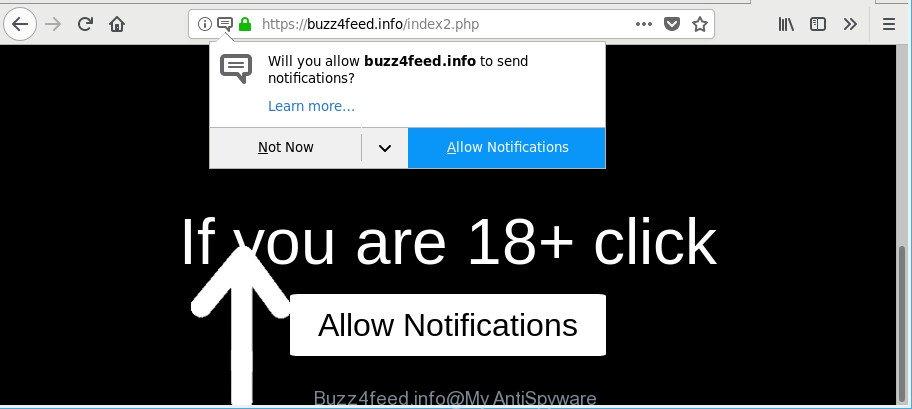 Buzz4feed.info