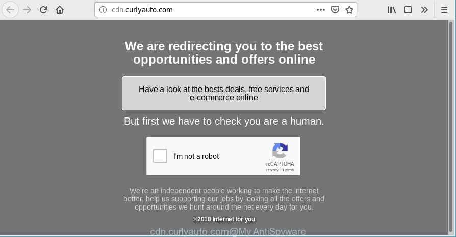 cdn.curlyauto.com