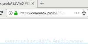 commank.pro