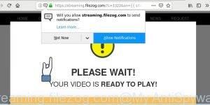 streaming.filezog.com
