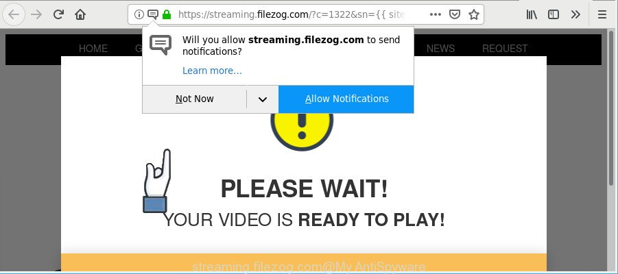 streaming.filezog.com