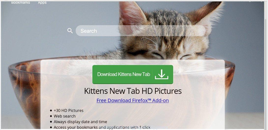 Kittens new tab