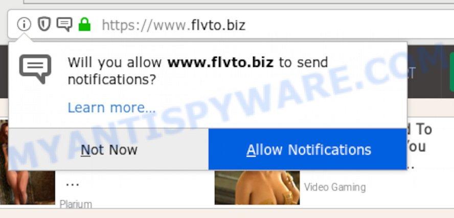 "flvto.biz ""allow notifications"" pop-up"