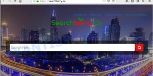Searchberry.co