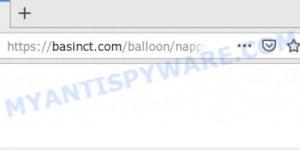 basinct.com