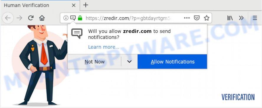 Zredir.com
