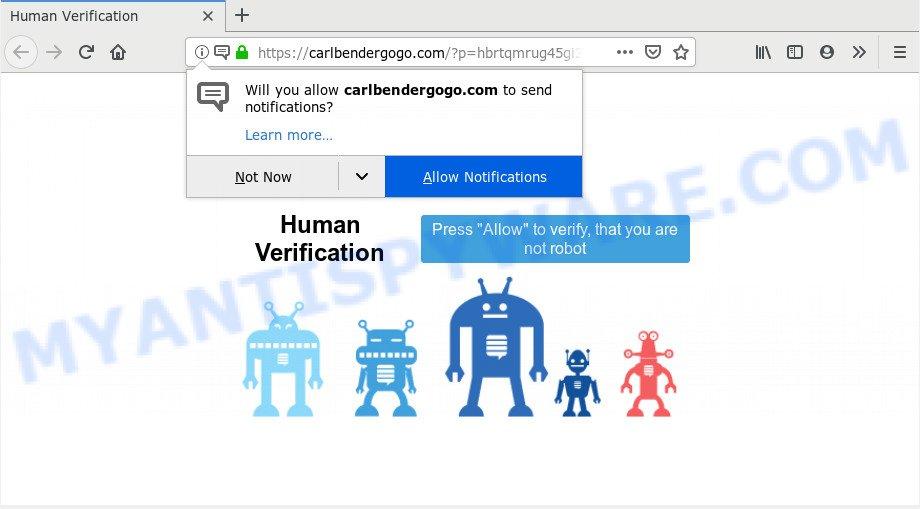 Carlbendergogo.com
