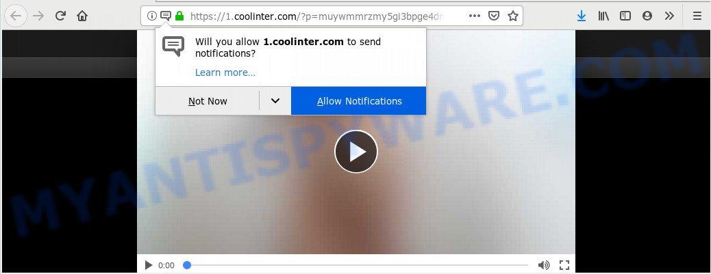 Coolinter.com