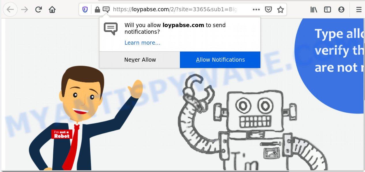 Loypabse.com