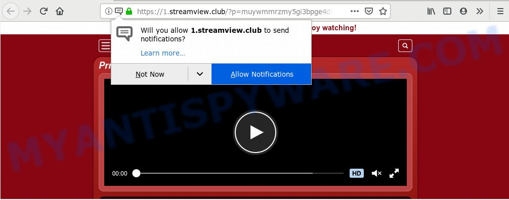 Streamview.club