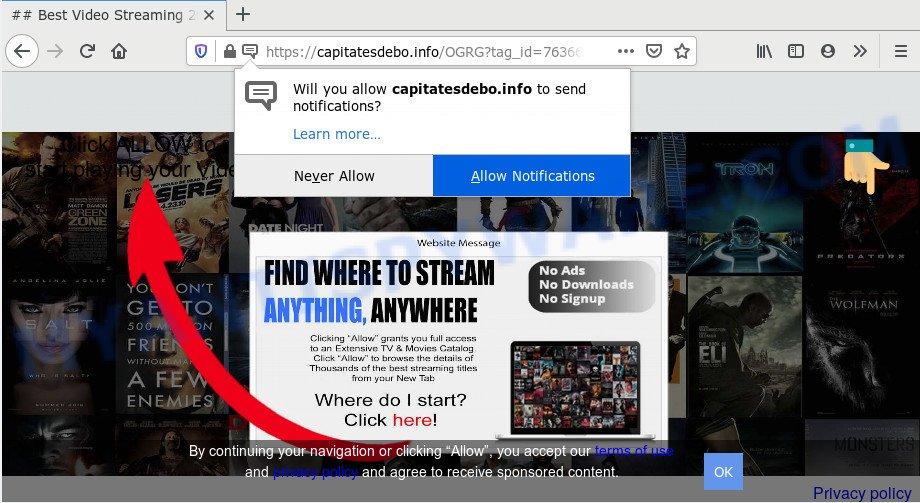 Capitatesdebo.info