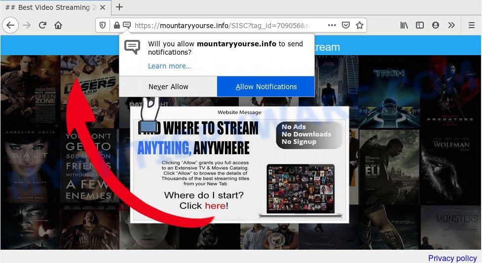 Mountaryyourse.info