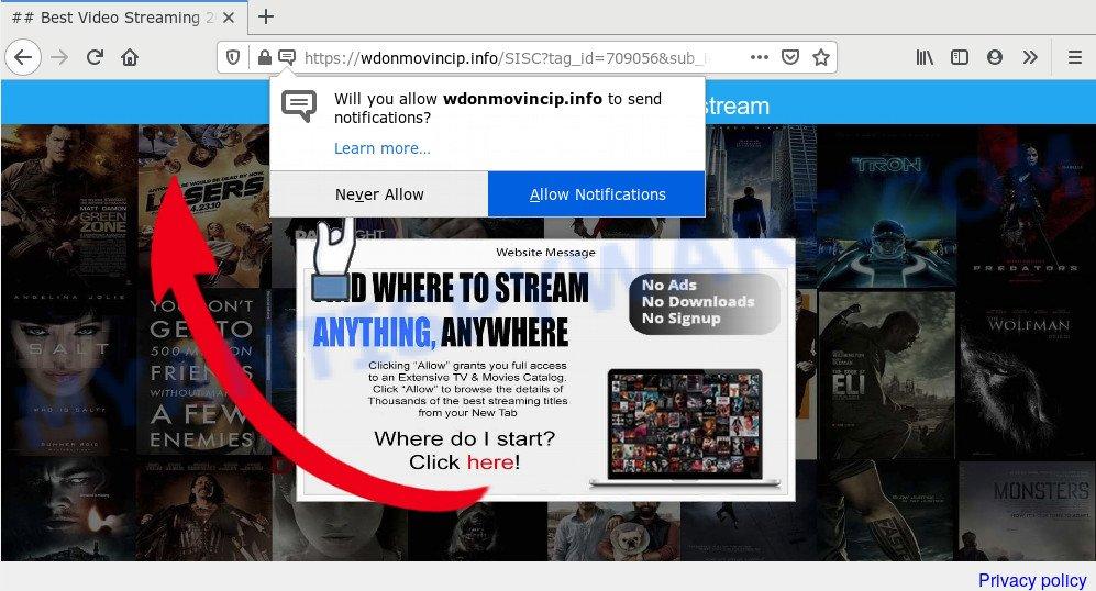 Wdonmovincip.info