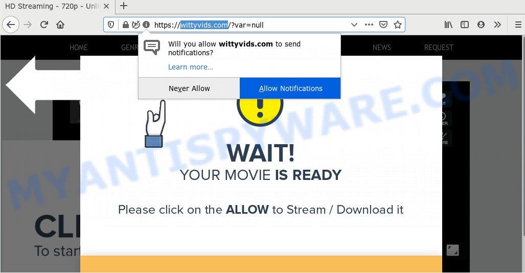 wittyvids.com