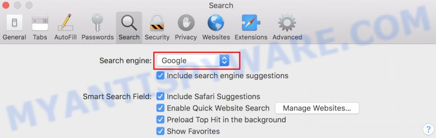 Safari search engine