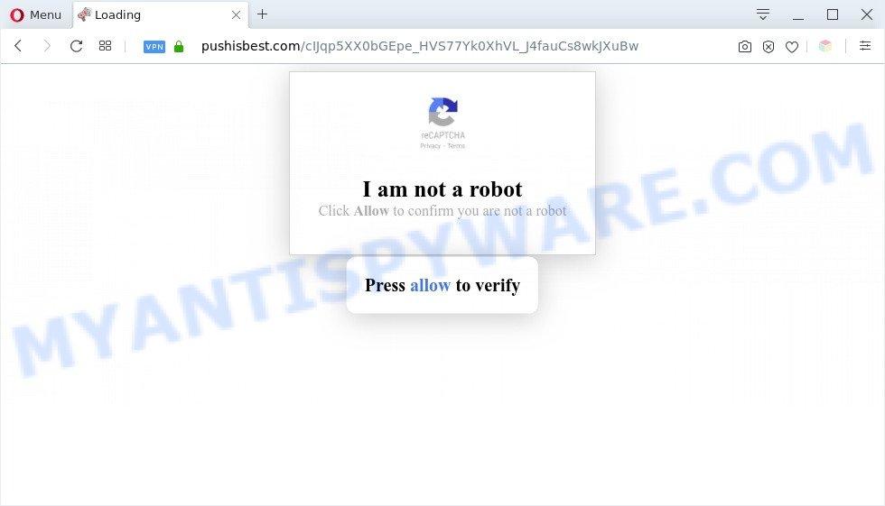 Pushisbest.com
