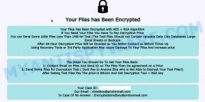 void ransomware