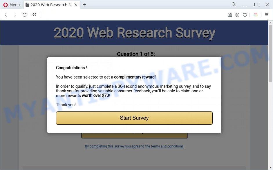 2020 Visitor Feedback Survey