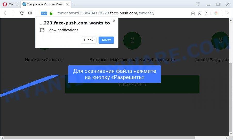 face-push.com
